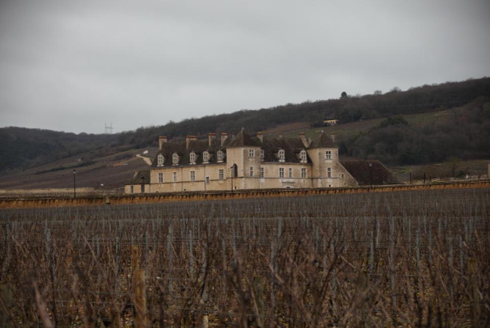 Château du clos Vougeot, Côte de Nuits Bourgogne